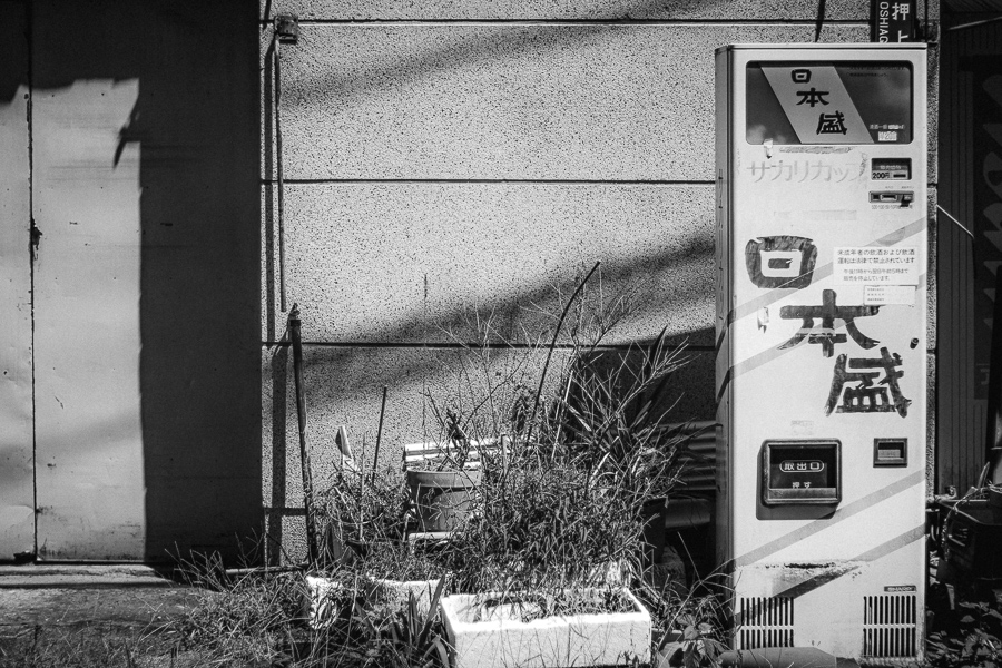 SIGMA (シグマ) sd Quattro + AUTO YASHINON-DX 50mm f1.7 (M42)