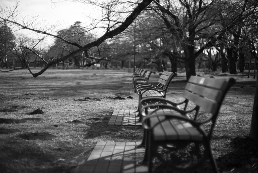 【Leica】「貴婦人」とお散歩