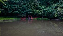 【写真を楽しむ6月】水無月の古都