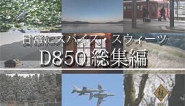 【写真を楽しむ6月】ALWAYS With  D850【Nikon】