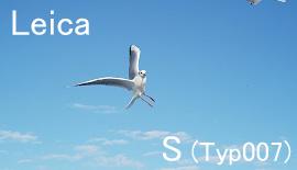 【Leica】S(Typ007)とは何者か