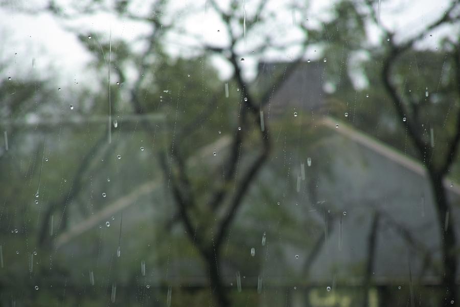 鷹の台ホール/雨の日