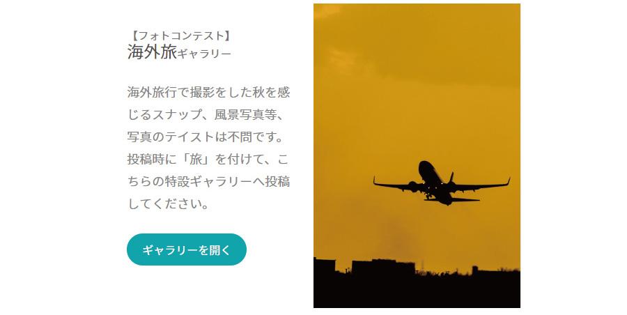 海外旅ギャラリー