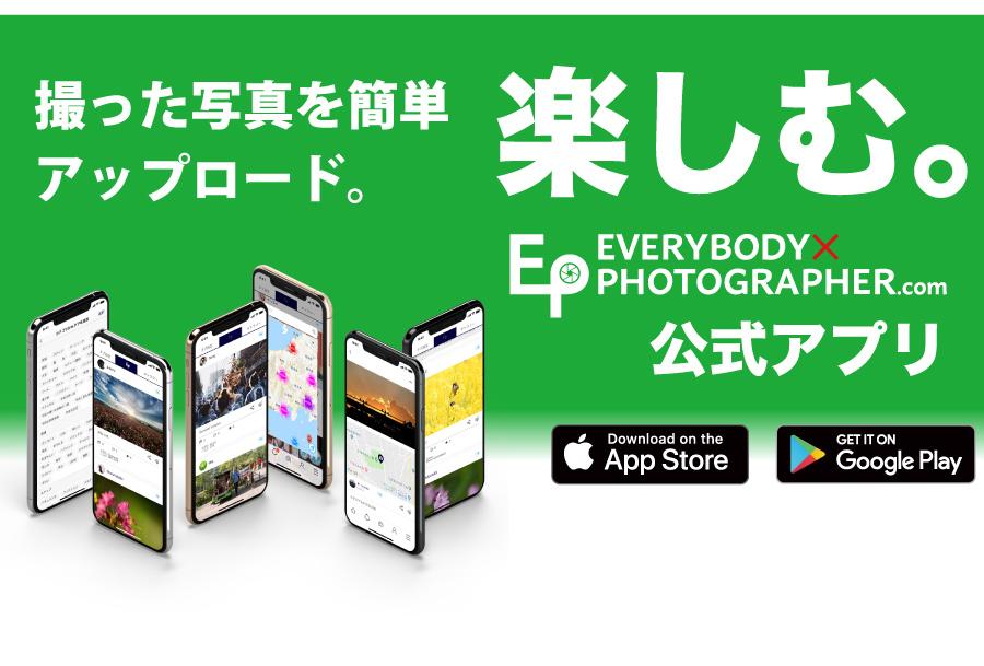 EVERYBODY×PHOTOGRAPHER.com