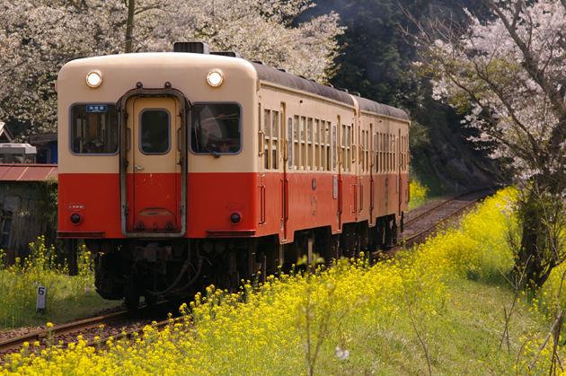 春爛漫の小湊鐵道