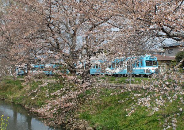 新坂川越に見る流馬号