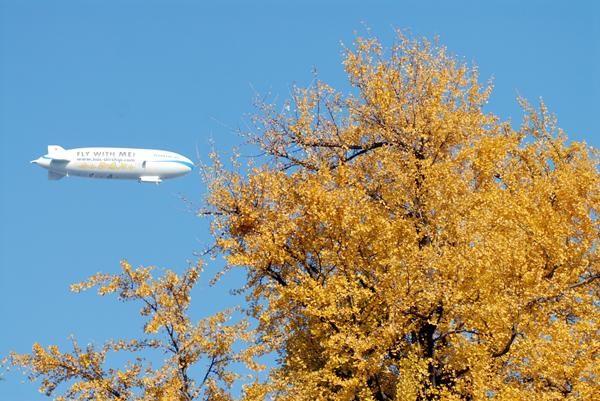 御苑の上空を飛ぶ飛行船