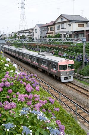 サーモンピンクの3000系(三鷹台~久我山にて)