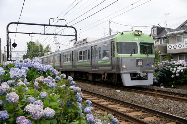 ライトグリーンの3000系(浜田山~西永福にて)
