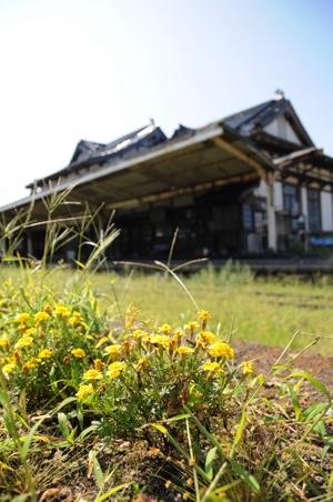 雑草に覆われたホーム