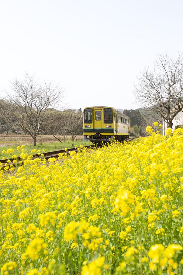 総元駅に入線するいすみ鉄道