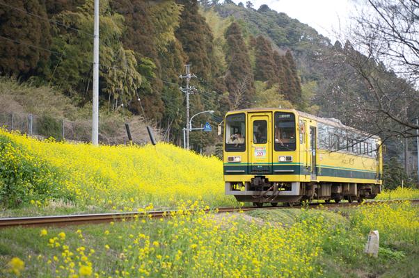 東総元を出て山を登るいすみ鉄道