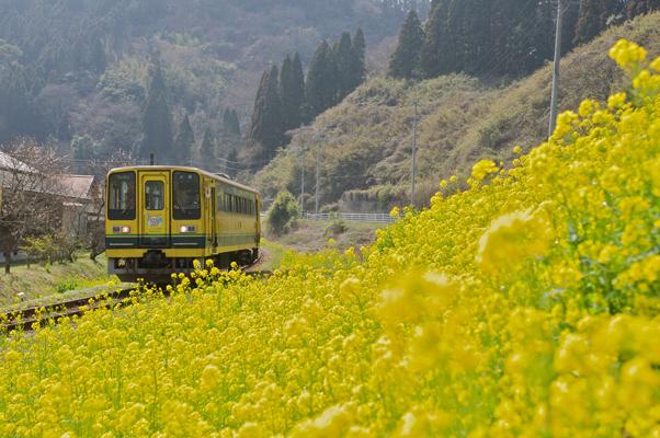 東総元へ向かういすみ鉄道