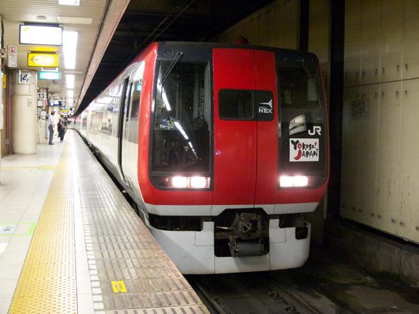 N'EX253系東京駅にて