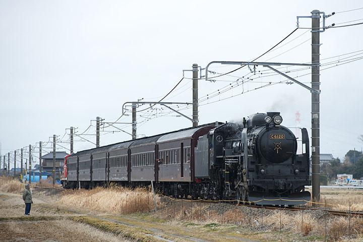 D4 +AF-S 70-200mmF2.8G ED VRII