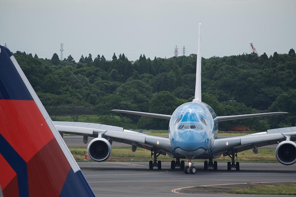A380の前顔