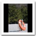 FUJIFILM FinePix S5pro × Nikon AF-S VR ED 70-300mm F4.5-5.6G