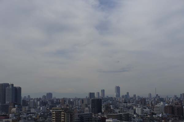 富士山方向を望む