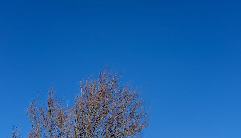 たくさんの空の色
