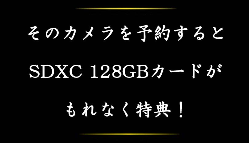 Nikon (ニコン) D7500