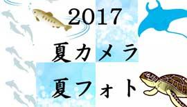 【夏カメラで夏フォト】防水デジカメ大集合 ~ from FUJIFILM ~