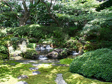 泉石亭の庭