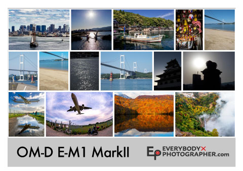 OM-E E-M1 Mark II エビフォト