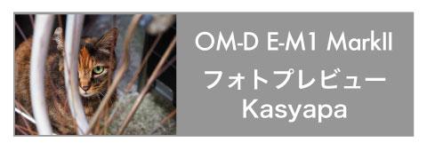 OM-D E-M1 Mark II Kasyapa