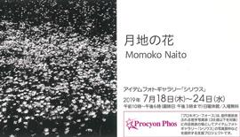 写真展のご案内 〜 Momoko Naito 写真展『月地の花』