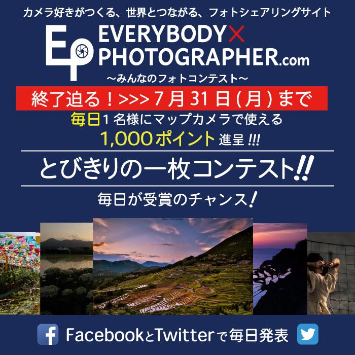 【エビフォト】毎日が当選日!『とびきりの一枚コンテスト』終了迫る!