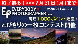 【エビフォト】終了迫る!『とびきりの一枚コンテスト』31日まで!