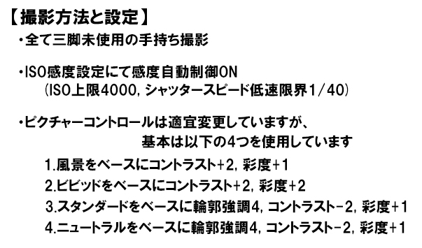 Nikon (ニコン) D610+Nikon (ニコン) AF-S NIKKOR 35mm F1.8G ED