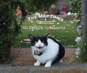 OLYMPUS × favorite