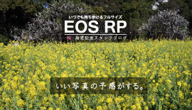 【EOS RP発売記念】いい写真の予感がする。vol. 4