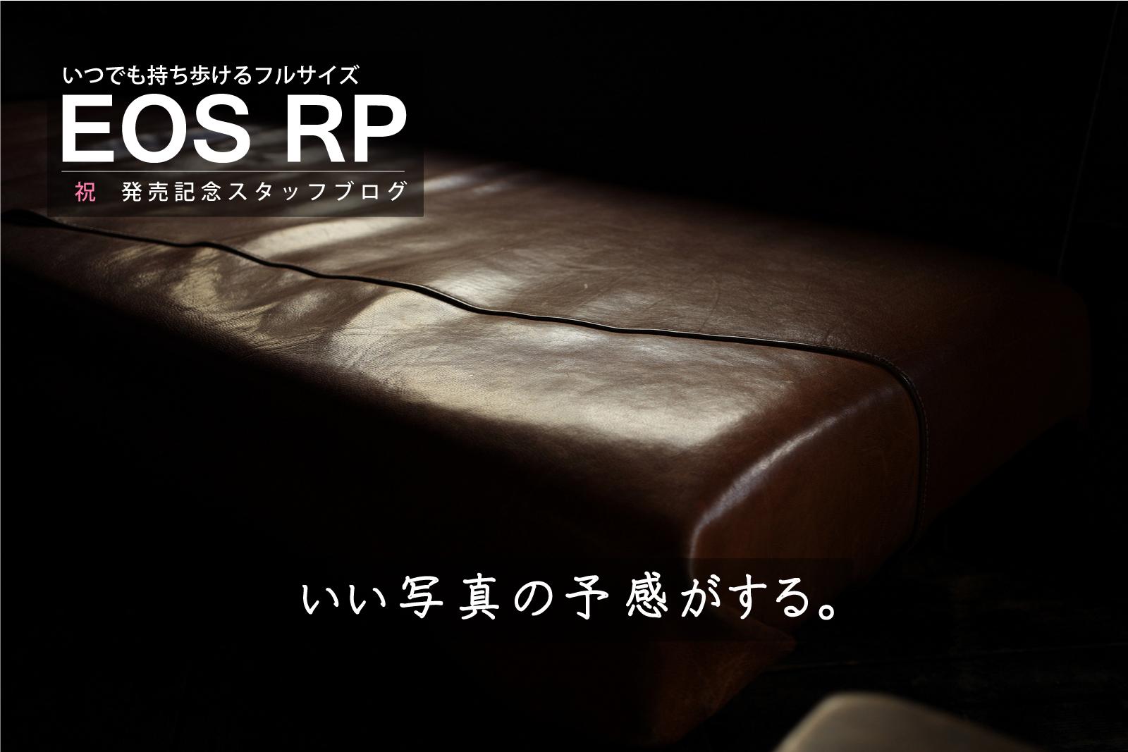 EOS R + EF 40mm F2.8 STM