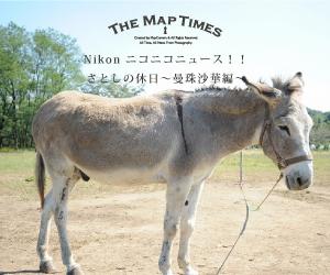【Nikon ニコニコニュース!!】 さとしの休日~曼珠沙華編~