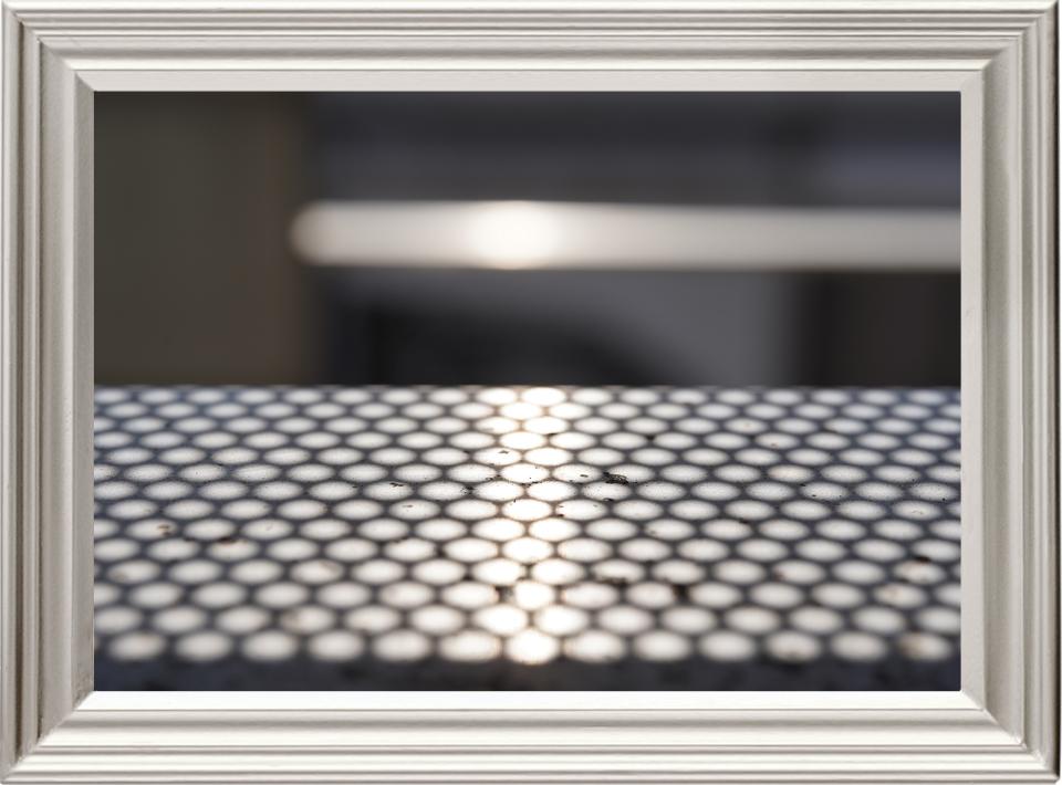 本日の写真「SONY α7III + SIGMA Art 70mm F2.8 DG MACRO」