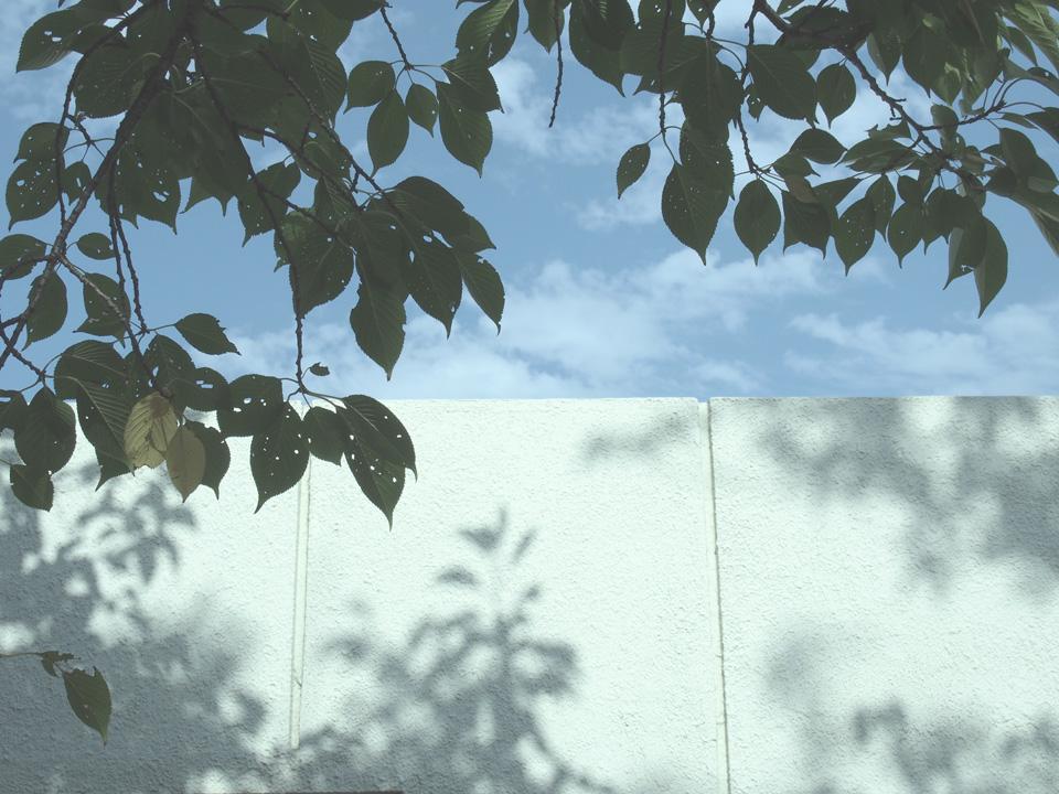 OLYMPUS PEN Lite E-PL5 + M.ZUIKO DIGITAL 14-42mm F3.5-5.6 Ⅱ R