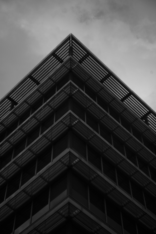 Leica M + Hektor 7.3cm/f1.9