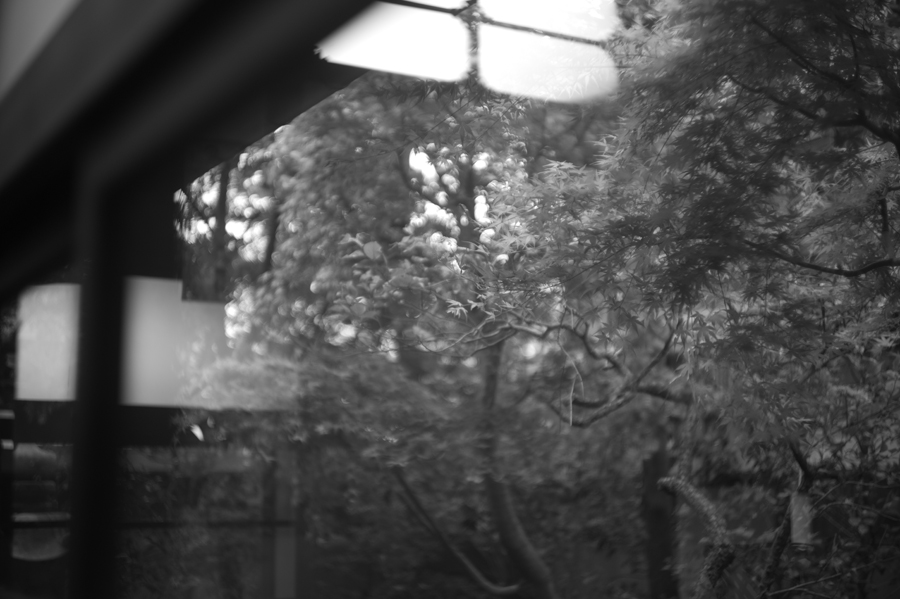 LEICA M Monochrom + Leitz Xenon 50mm/f1.5