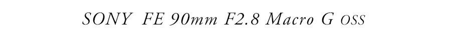 """SONY FE 90mm F2.8 Macro G OSS """"> </center></p> <p> 今回ご紹介するレンズはCP+2015で参考出品されていた『SONY FE 90mm F2.8 Macro G OSS』です。 カメラ好きの皆さんはこの""""G""""の文字に反応したのではないでしょうか。ミノルタ時代から続く高性能レンズのみに与えられる""""G""""の称号は、ZEISS銘と共にソニーのレンズブランドを支える2本の柱の1つと言っていいでしょう。しかも今回はFEマウント初のマクロレンズです。このジャンルは各メーカーの個性やこだわりが見えやすいですからね、どのような描写を見せてくれるか楽しみです。</p> <p>まず一枚目のカットから。ラベンダーの花へ蜜を吸いに来たミツバチを撮りました。はじめはF2.8で撮影していたのですが、被写界深度が浅すぎて動き回るミツバチをうまく捉えられず、F4で何とか撮ることができました。描写はさすがGレンズ、フォーカス部の解像力が非常に高いのがわかります。しかしながら線に角があるような硬い印象はなく、ボケ味も含め全体的に滑らかな絵作りはミノルタレンズの写りを思わせる美しさです。</p> <p> <center>   <a href="""
