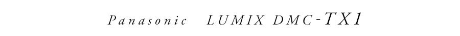 Panasonic (パナソニック) LUMIX DMC-TX1
