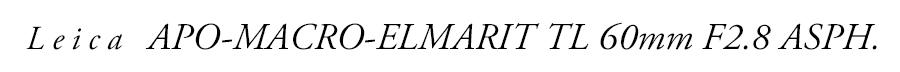 Leica (ライカ) アポ・マクロ・エルマリートTL 60mm F2.8 ASPH.