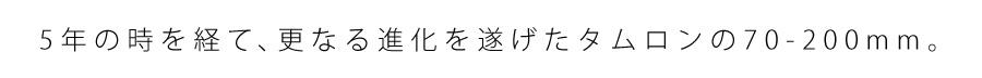 TAMRON (タムロン) SP 70-200mm F2.8 Di VC USD G2 A025E(キヤノン用)