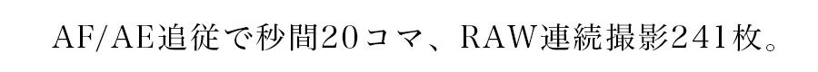 SONY(ソニー) α9