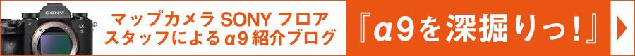 α9特集ブログ