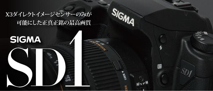 SIGMA SD1 レポート