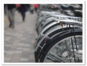 自転車 開放