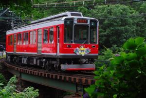 紫陽花電車