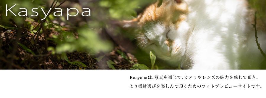 Kasyapa_topimg